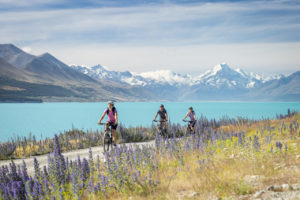 Cyclists bike the Alps 2 Ocean Cycle Trail along the Lake Pukaki foreshore with views of Aoraki Mount Cook.