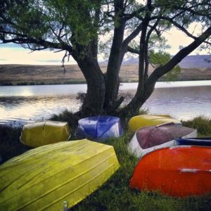 Colourful boats on the shore of Lake Alexandrina.